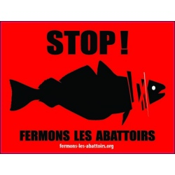 "Sticker ""STOP ! Poissons"""