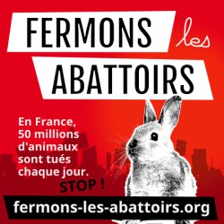 "Sticker ""Fermons les abattoirs - lapin"""