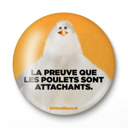 "Badge ""La preuve que les poulets sont attachants"""