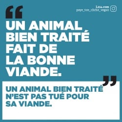 "Sticker ""Paye ton cliché vegan - 1"""